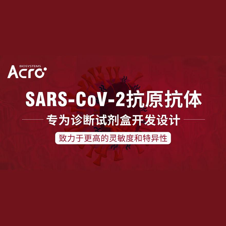 SARS-CoV-2 诊断抗原抗体