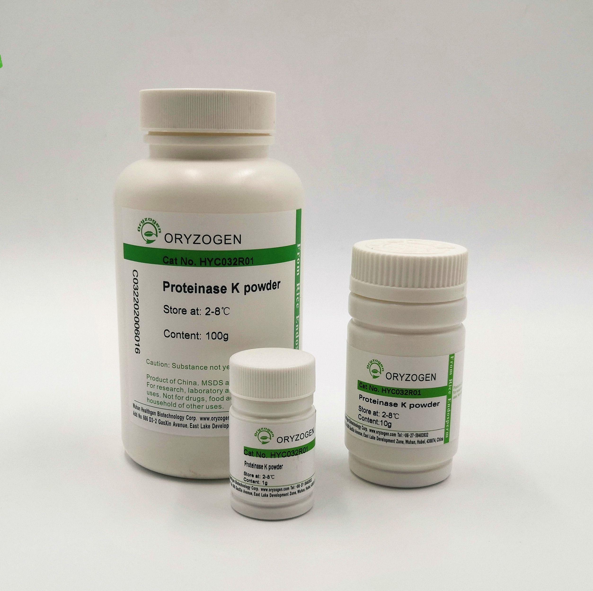 蛋白酶K,干粉  Proteinase K