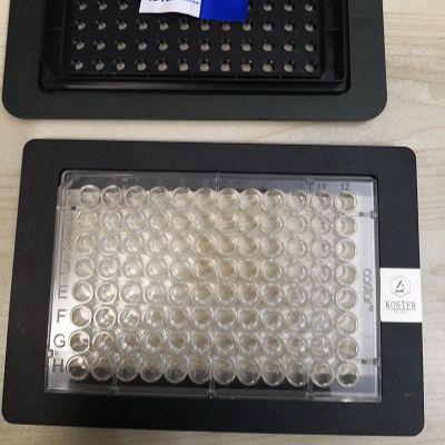 KOSTER显微镜样品框/显微镜样品夹(适合多孔板)