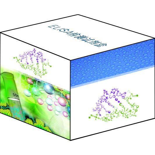 人活性氧(ROS)ELISA试剂盒