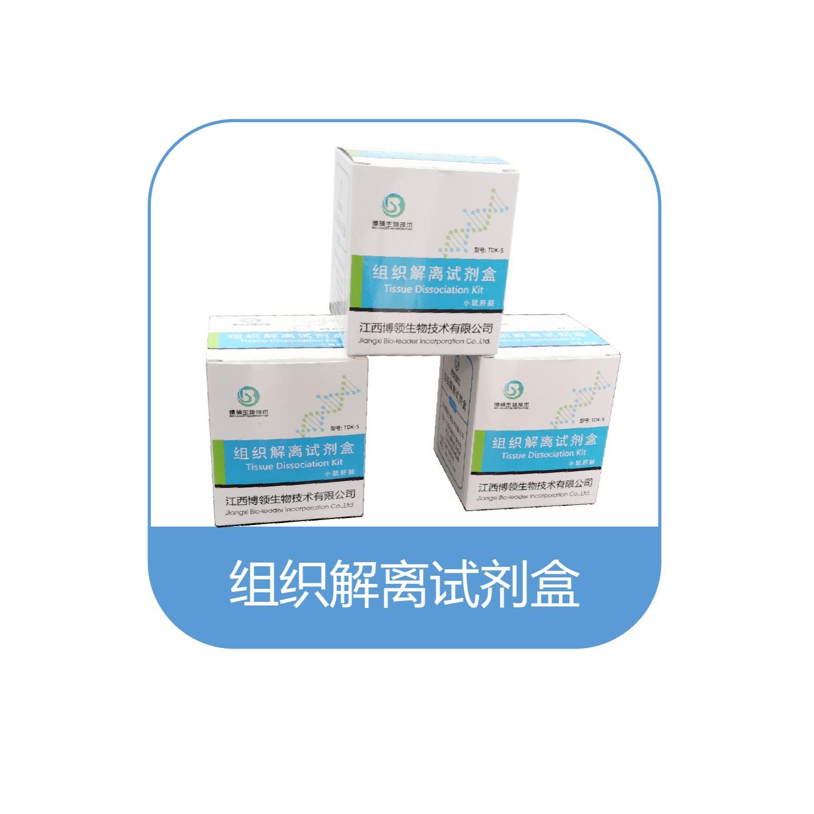 肝脏解离试剂盒