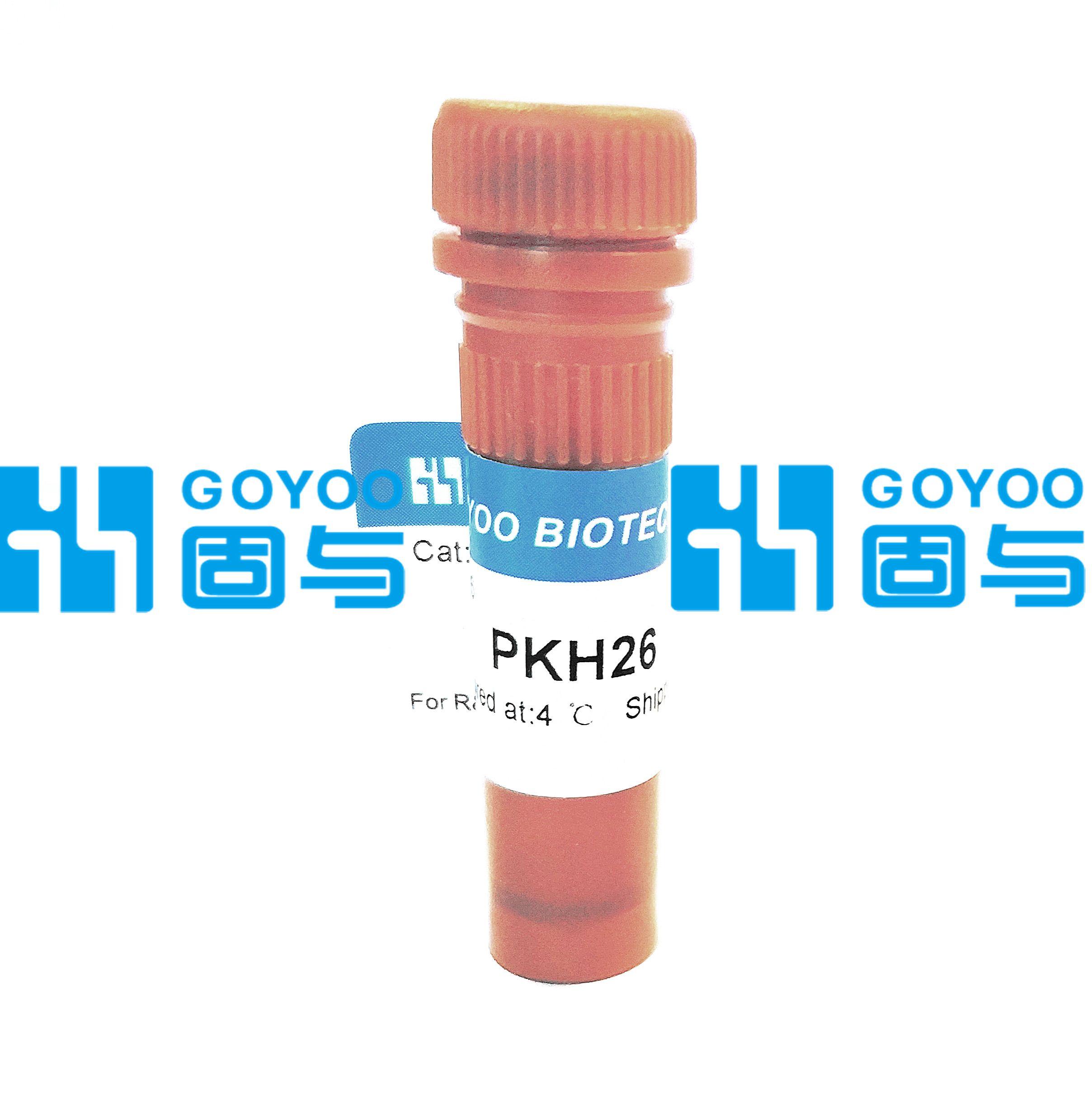 PKH26 红色荧光细胞链接试剂盒