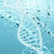 蛋白质组学检测