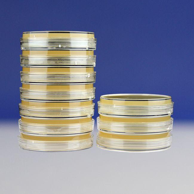 大豆酪蛋白琼脂(TSA)培养基平板(9cm)