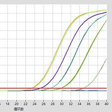 10min 病毒DNA/RNA提取试剂盒