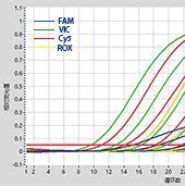 2×RAPA3G MultiPlex Probe qPCR Mix