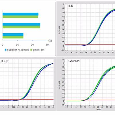 6min Fast 1st cDNA Synthesis Kit