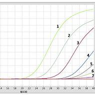 冻干非洲猪瘟实时荧光PCR检测试剂盒