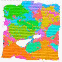 空间转录组测序分析【10x Genomics / BD】