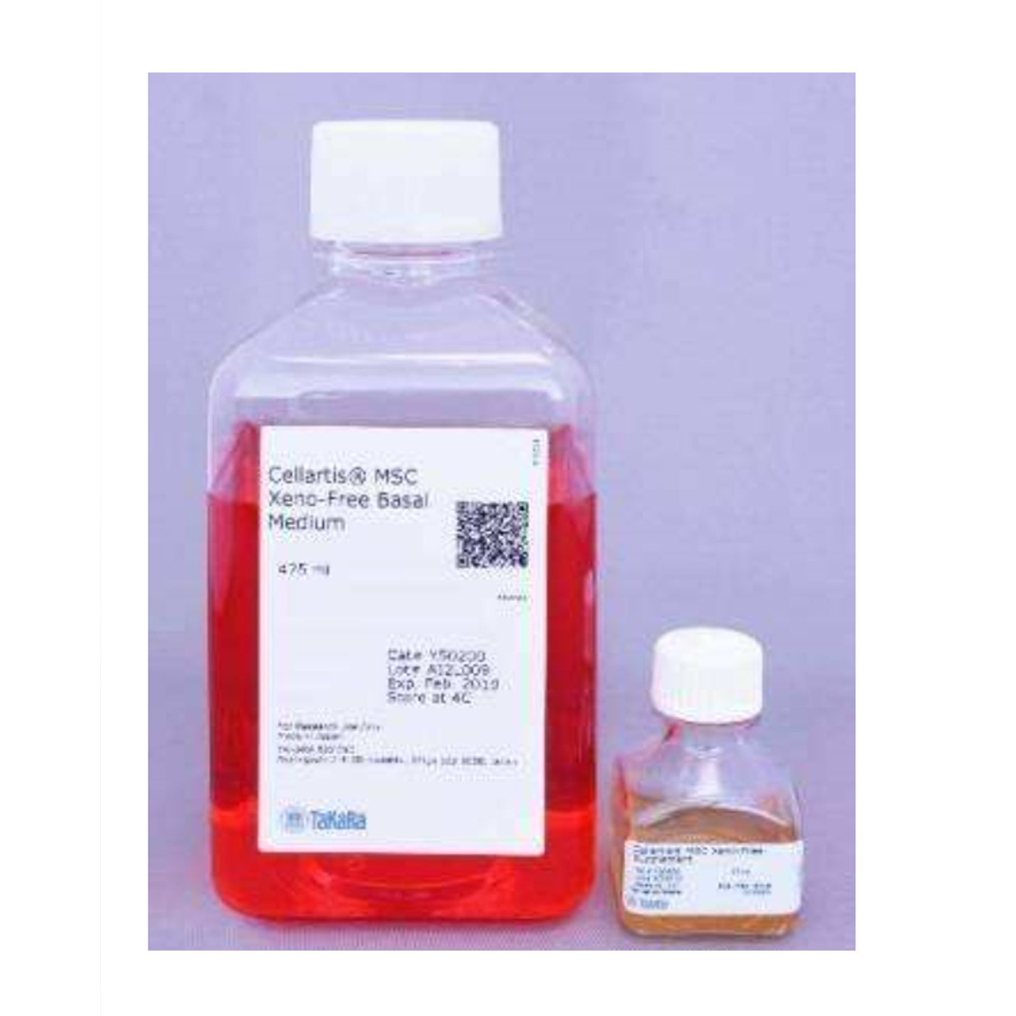 CellArtis Y50055 MireaCell Endothelial Cells (from ChiPSC12) Kit 内皮细胞