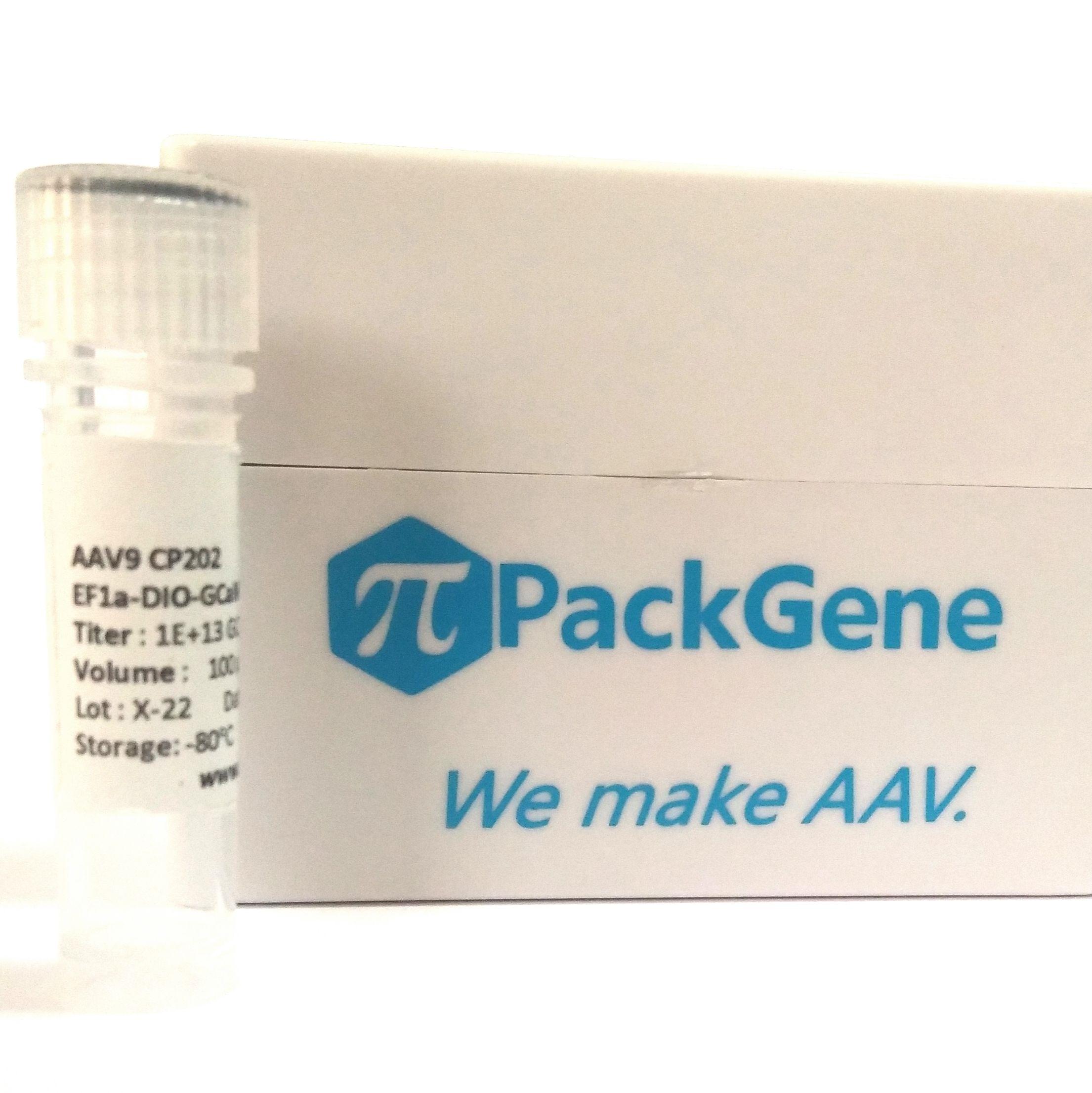 荧光蛋白AAV病毒-K4系列