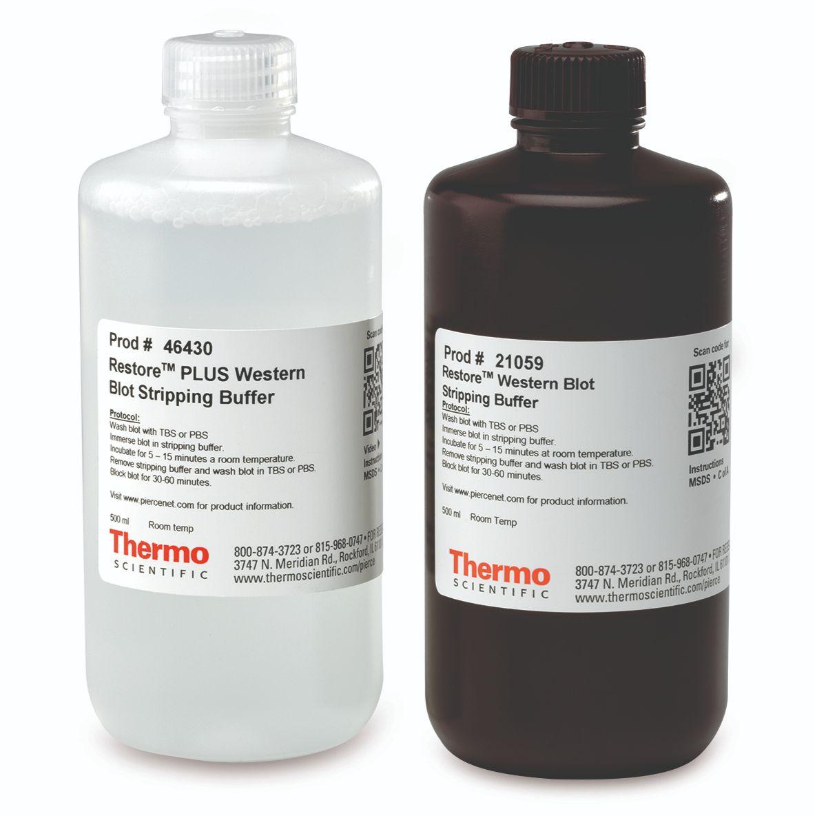 Restore抗体剥离液