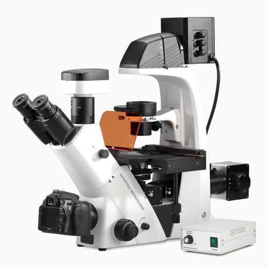 BDS500实验室倒置荧光生物显微镜