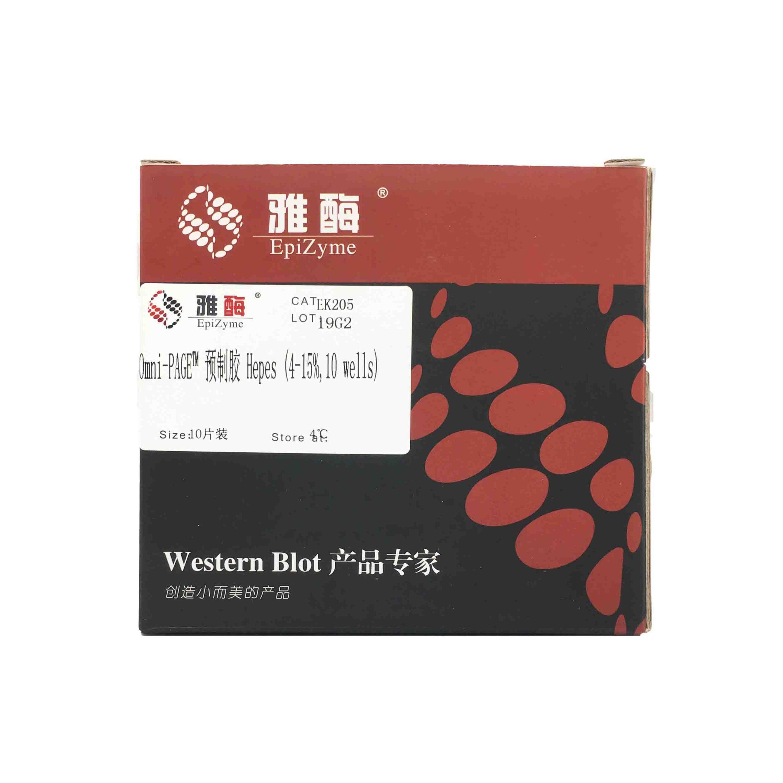 LK205 Omni-PAGE™ 预制胶 Hepes 4~15%,10 wells
