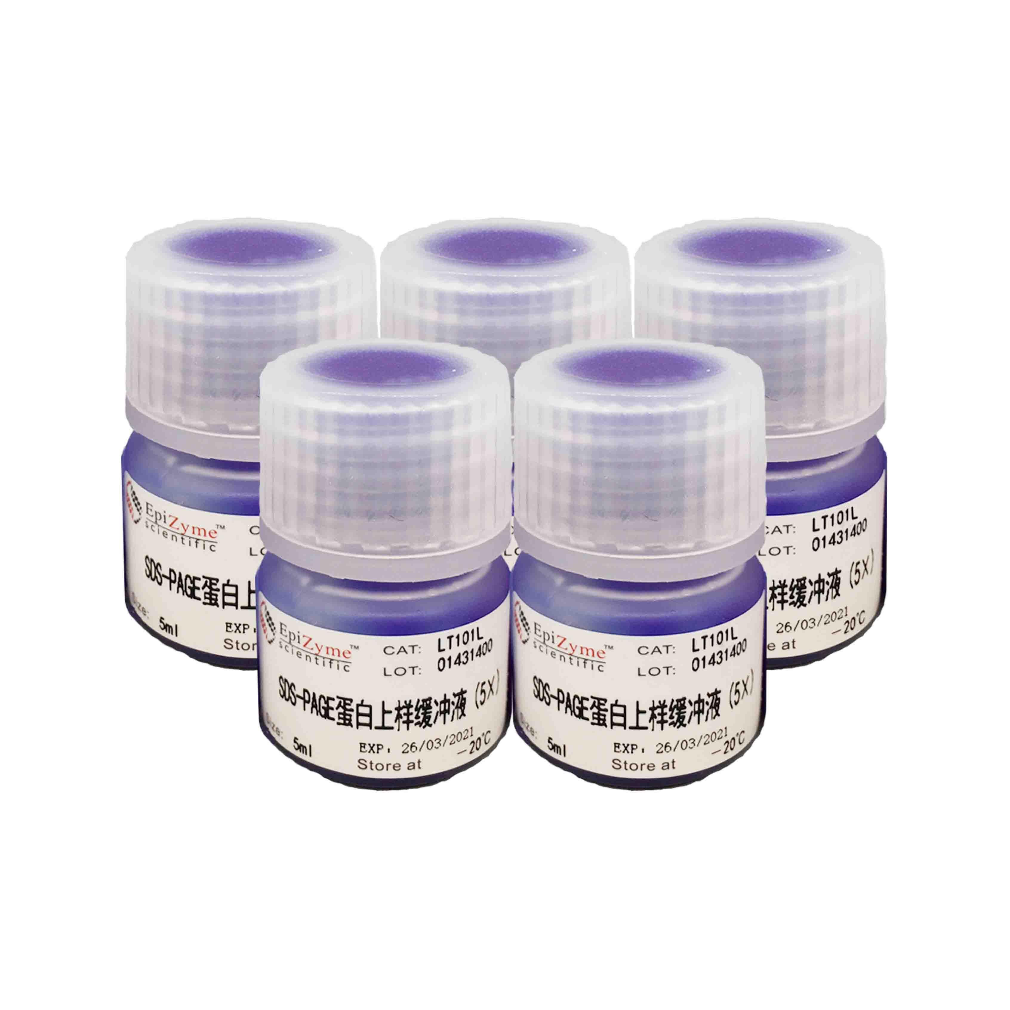 LT101L Omni-Easy™速溶型蛋白上样缓冲液(变性,还原型,5×)
