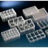 Nunc F96MicroWellTM微孔板,聚苯乙烯,外部尺寸128*86mm,表面,细胞培养,已灭菌,有盖,数量每包/箱1/50  167008