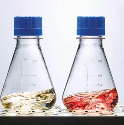 Nunc 300 cm2 细胞培养瓶,透气/密闭盖 132097