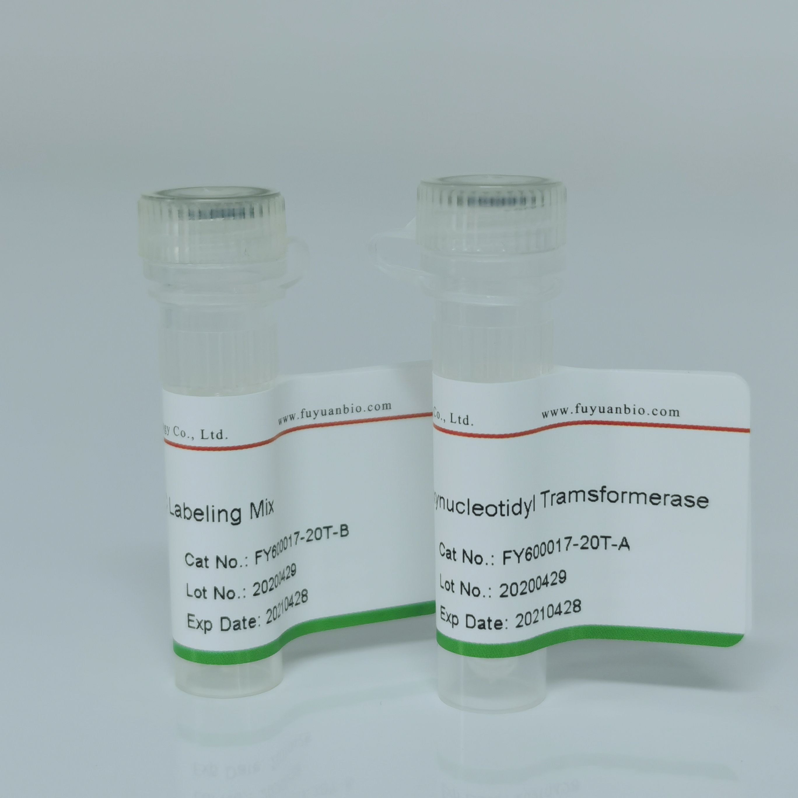 TUNEL细胞凋亡检测试剂盒(FITC)
