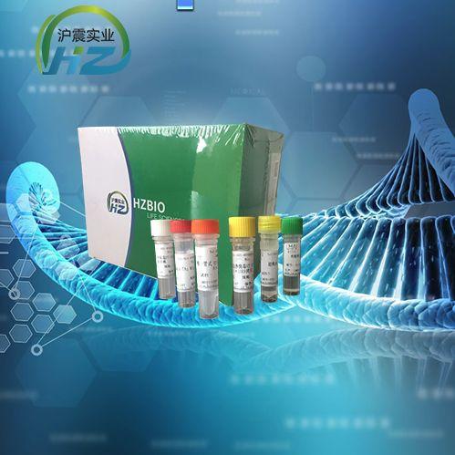 Yeast酵母菌属通用荧光及可视化LAMP试剂盒