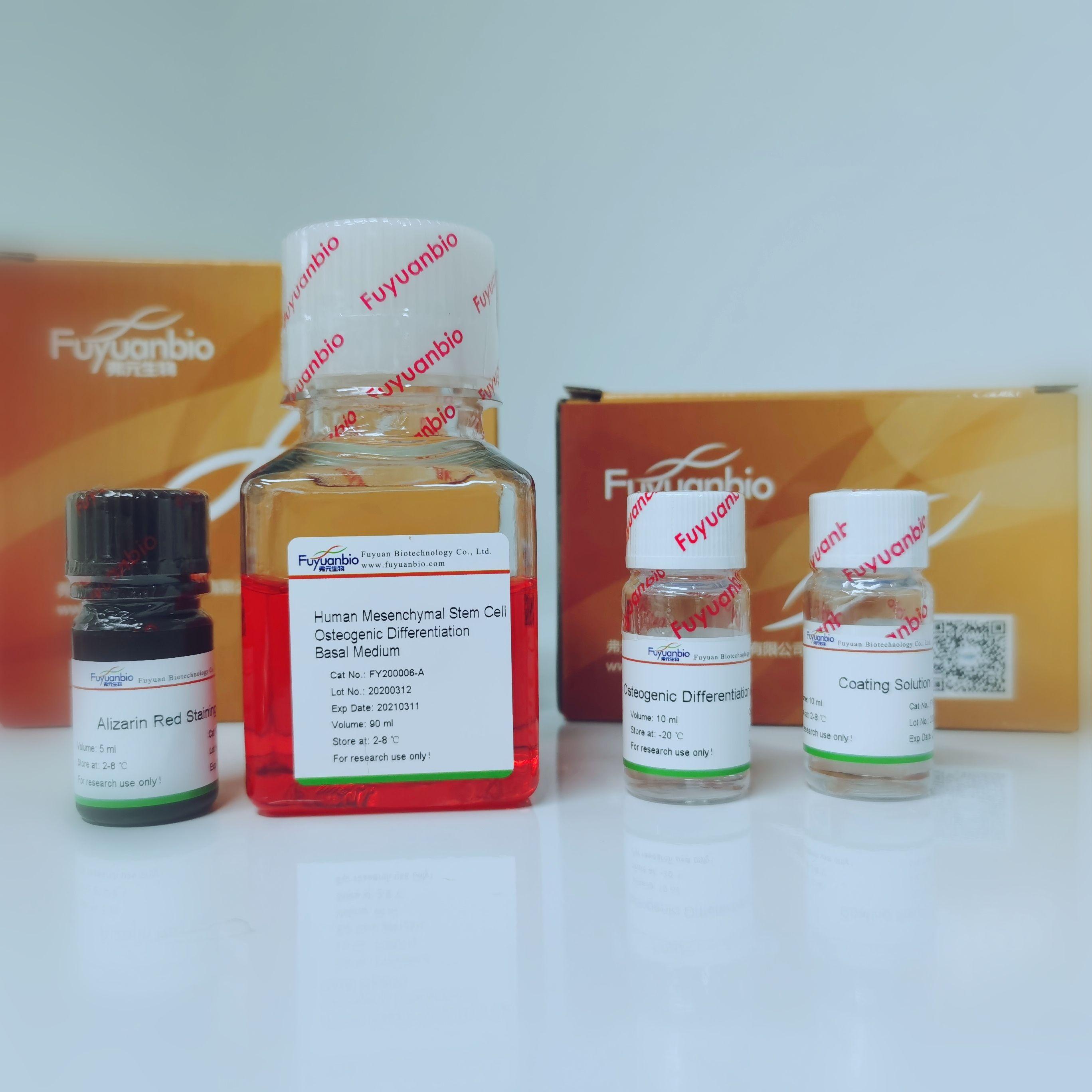 人间充质干细胞成骨诱导试剂盒培养基