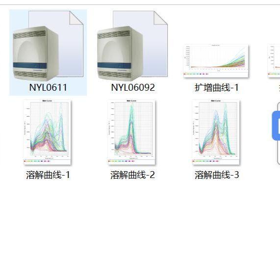 实时荧光定量PCR(RT-PCR)实验