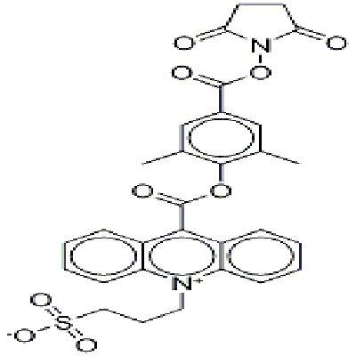 吖啶酯NSP-DMAE-NHS