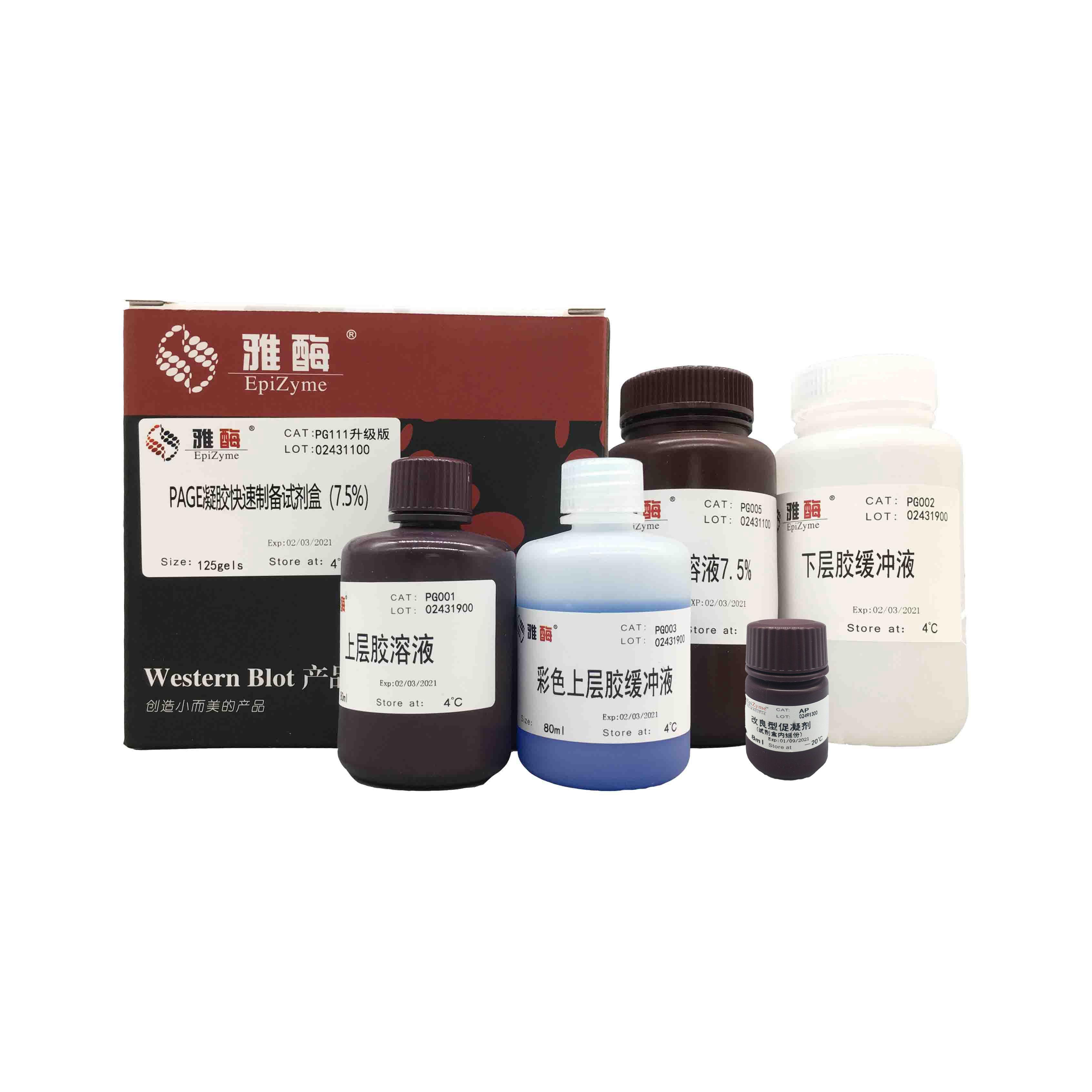 PG111 PAGE凝胶快速制备试剂盒7.5%