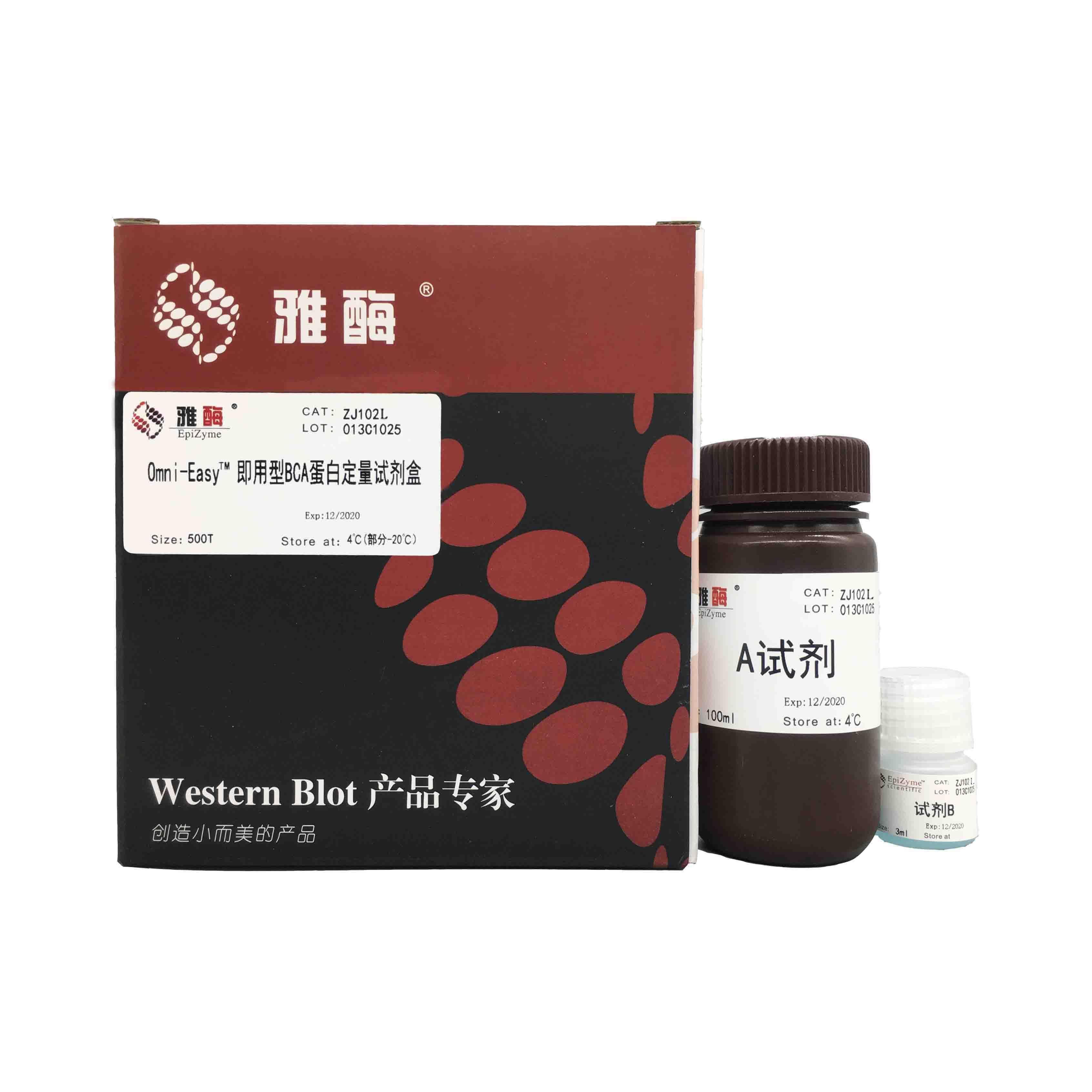 ZJ102L Omni-Easy™即用型BCA蛋白定量试剂盒