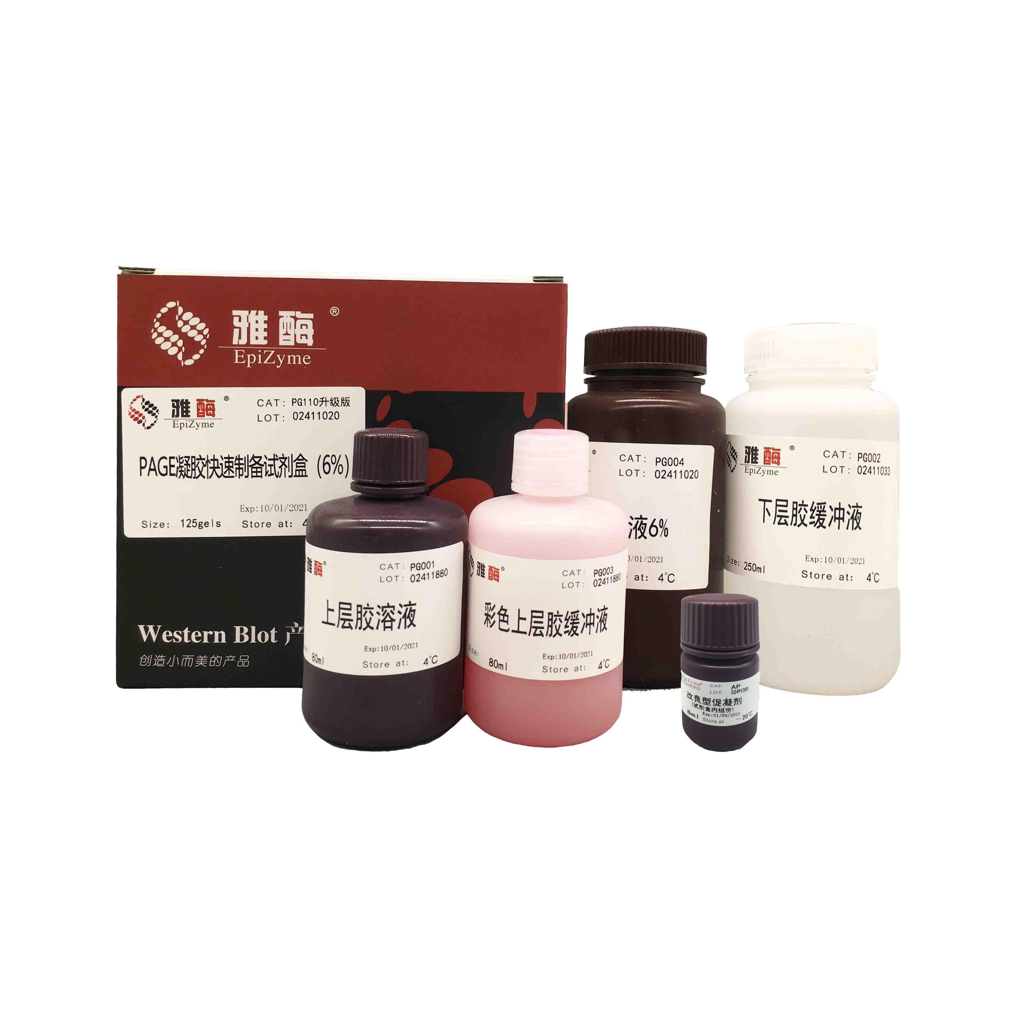 PG110 PAGE凝胶快速制备试剂盒6%