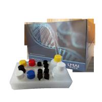 人Ⅰ型前胶原C末端肽elisa试剂盒