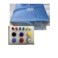 大鼠膜联蛋白Ⅰelisa试剂盒