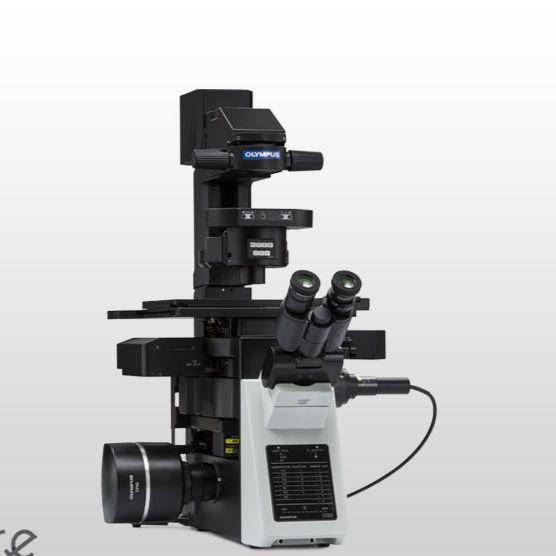 奥林巴斯倒置显微镜IXplore Pro