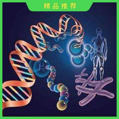 全基因组关联分析