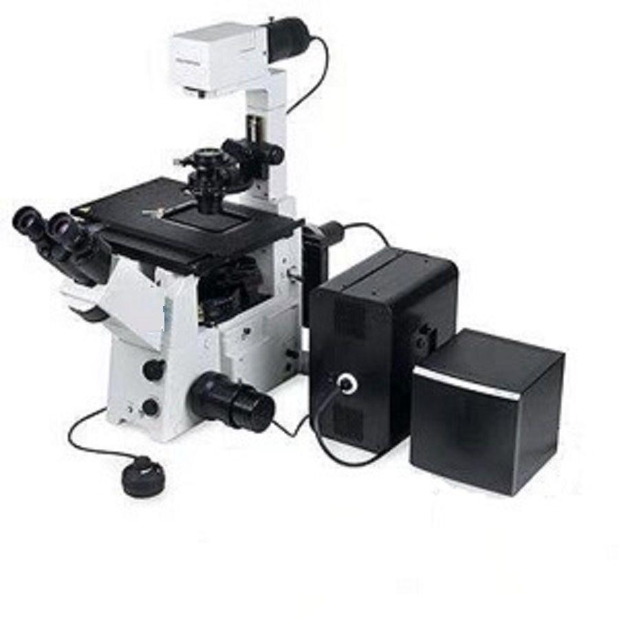 倒置荧光扫描显微镜