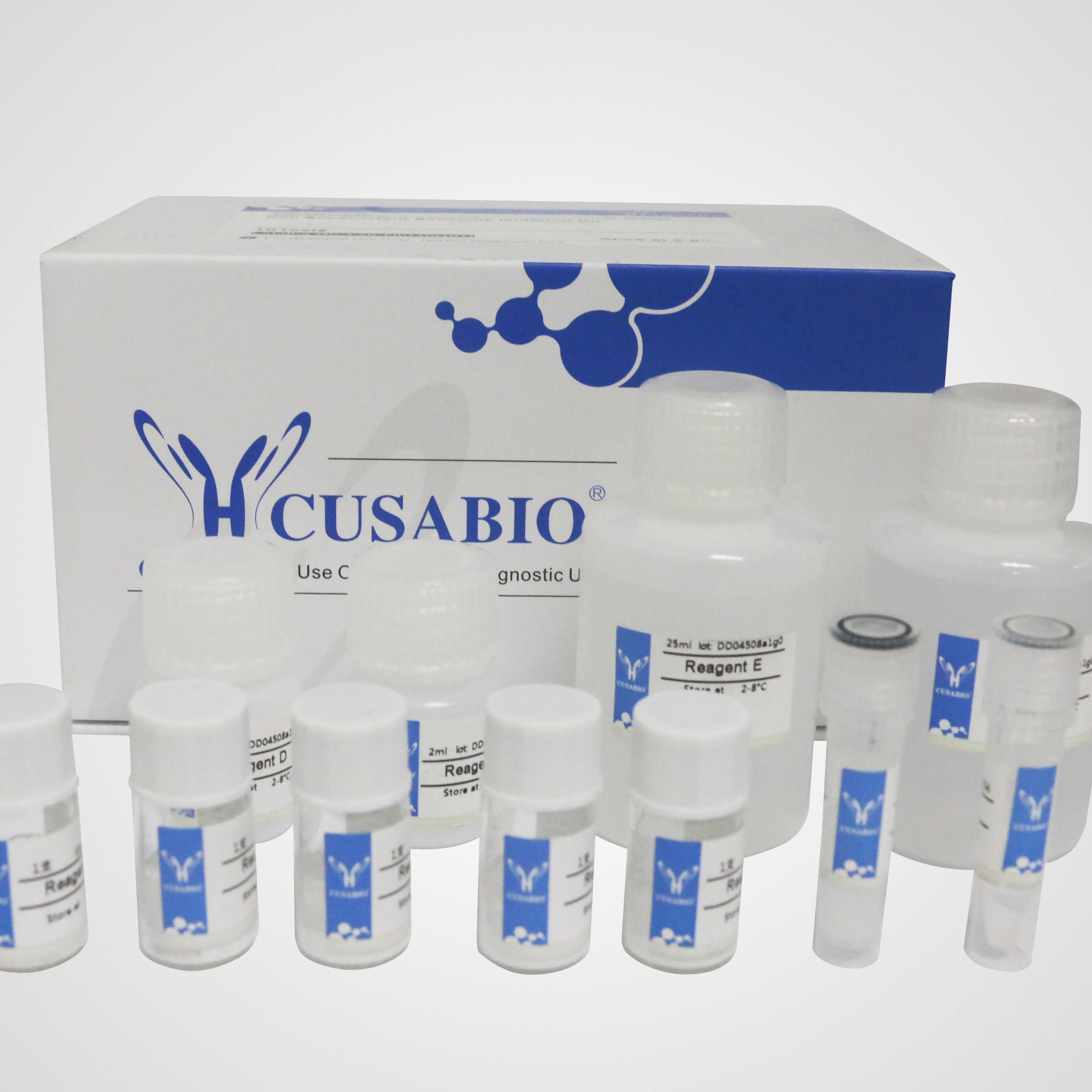 EXOSOME外泌体提取试剂盒