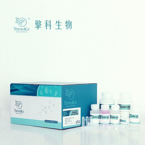 高纯度质粒DNA小量提取试剂盒/高纯度/核酸提取及纯化试剂/擎科生物TSINGKE
