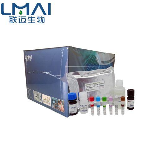 PCR试剂盒,染料法PCR试剂盒,探针法荧光定量PCR试剂盒