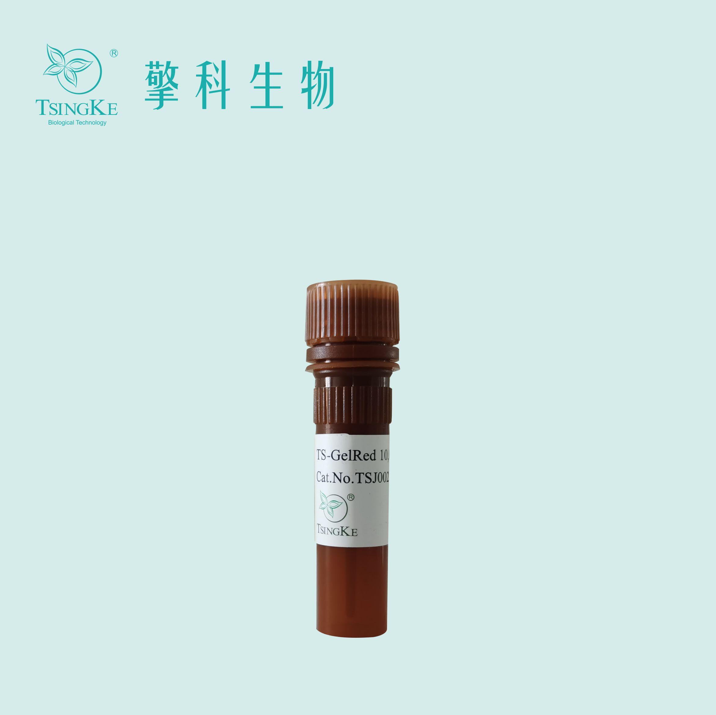 TS-GelRed 核酸凝胶染料 Ver.2(10,000×水溶液)