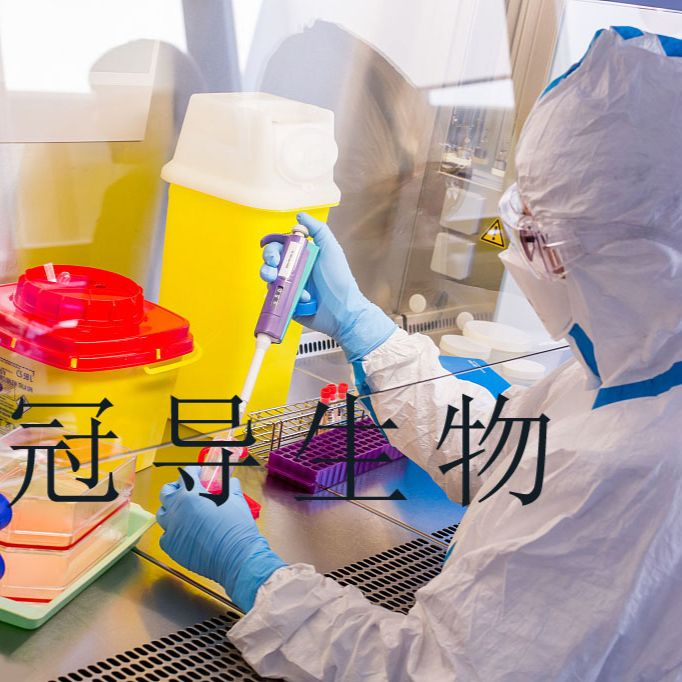He La:人宫颈癌稳定传代细胞 完全培养基