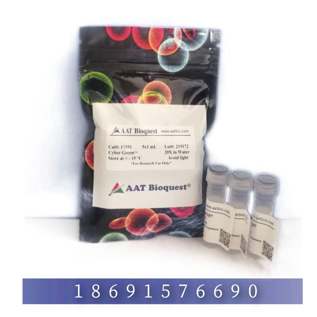 荧光法MMP-3活性检测试剂盒 *绿色荧光*