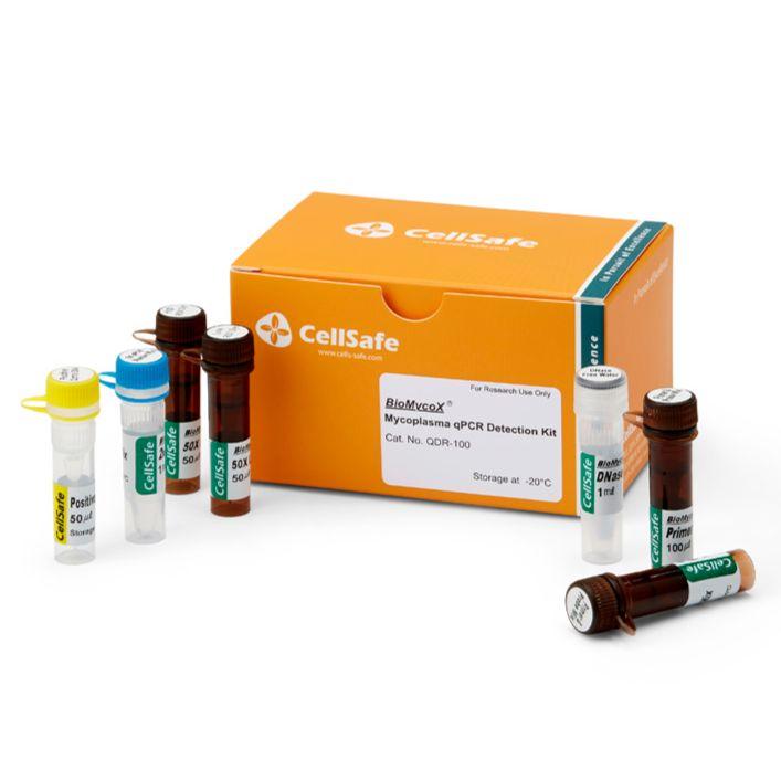 BioMycoX® Mycoplasma qPCR Detection Kit支原体检测试剂盒
