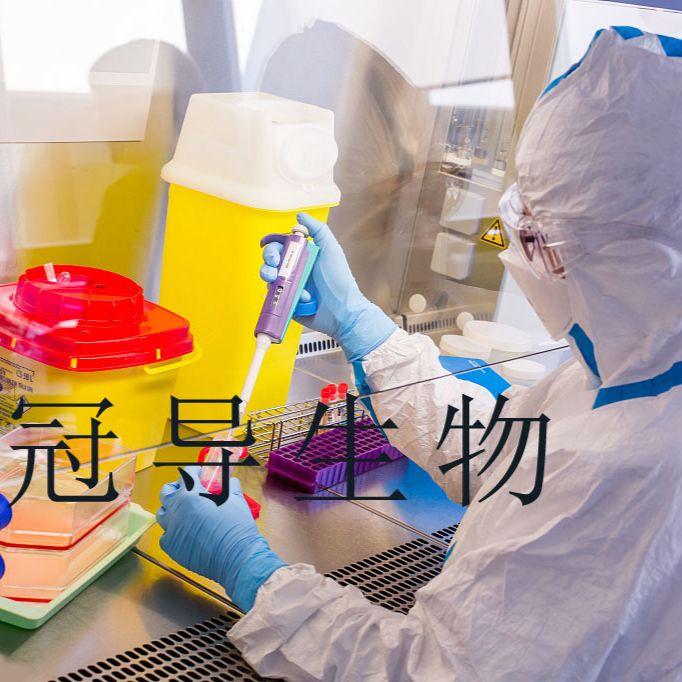 LA-4 [Mouse lung adenoma]:小鼠肺癌反复传代细胞|完全培养基