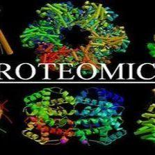 舍为斯-蛋白质组学