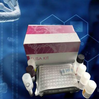 人基质金属蛋白酶1检测试剂盒