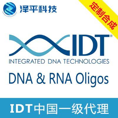 guide RNA设计合成服务