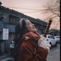 dingxiang9512