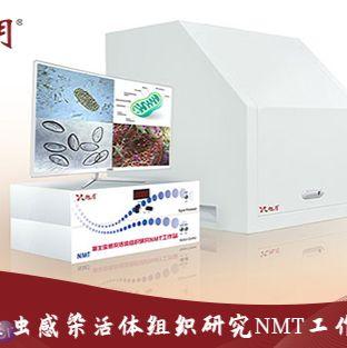 寄生虫感染活体组织研究NMT工作站