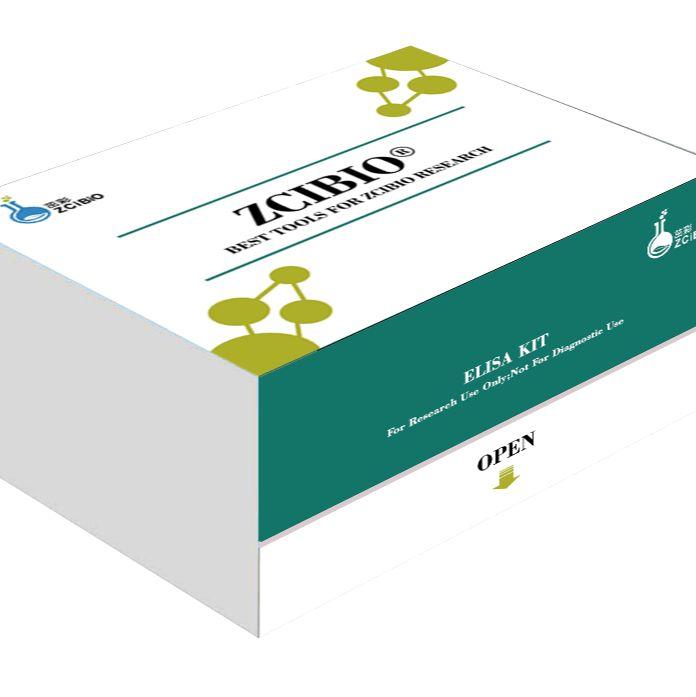 斑马鱼多巴胺(DA)定量检测试剂盒(ELISA)