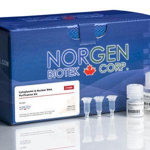 Norgen Biotek特色细胞质丨核RNA提取试剂盒