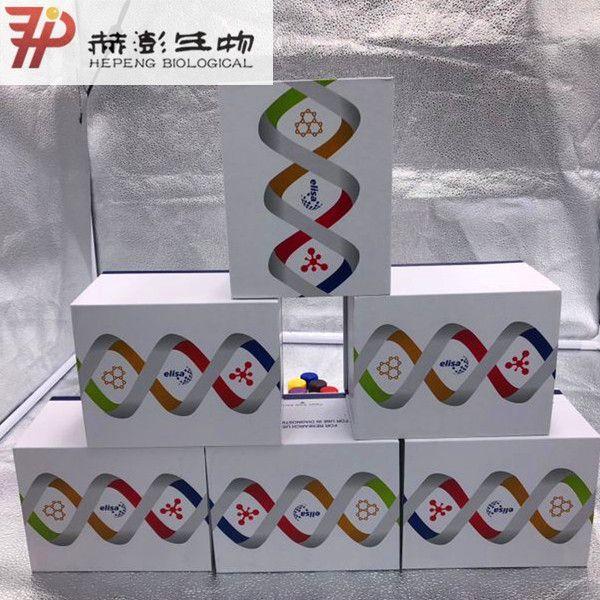 小鼠5羟色胺(5-HT)ELISA试剂盒